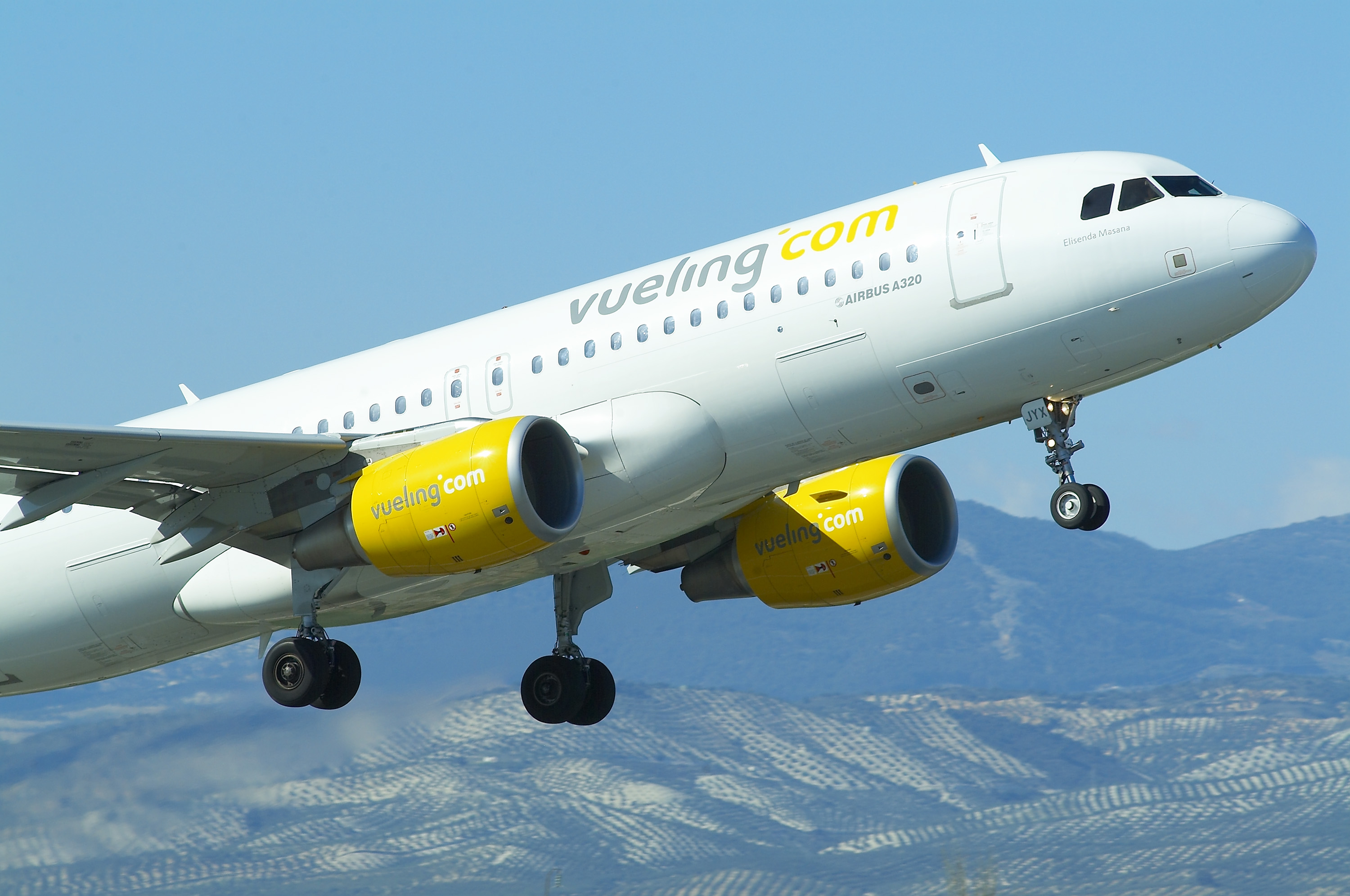 vueling services travelling business