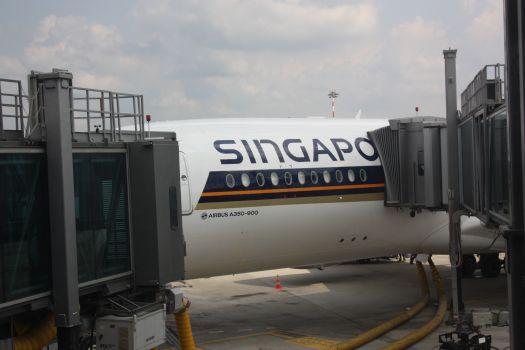L'A350 di Singapore Airlines a Malpensa