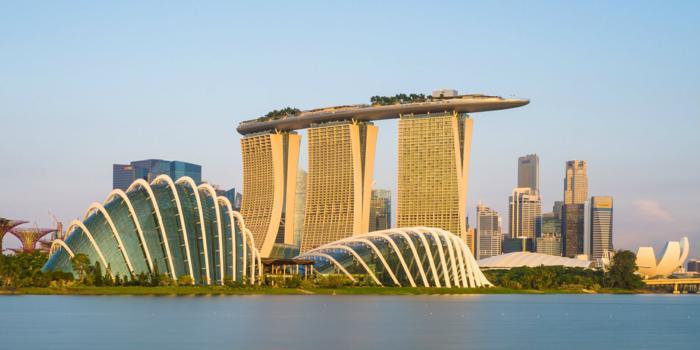 Mice a Singapore