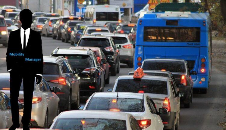 Decreto mobility manager